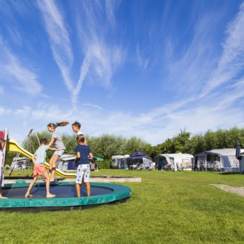 Pieternellahoeve verhuur en camping